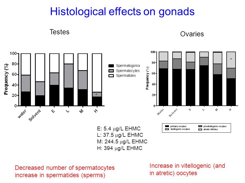 Histological effects on gonads