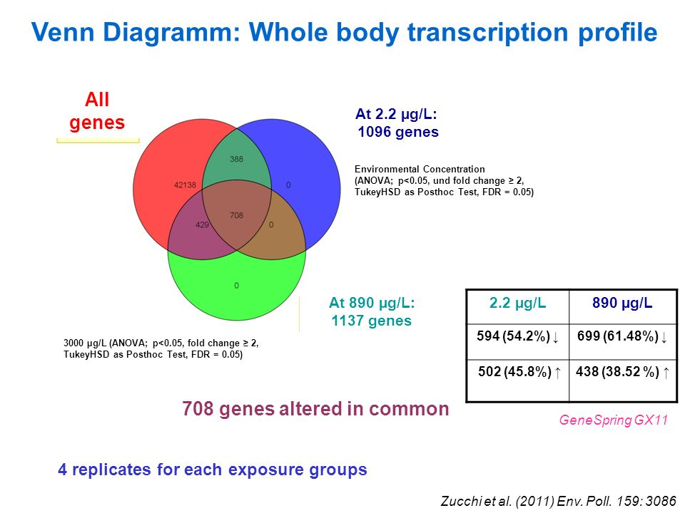 Venn Diagramm: Whole body transcription profile