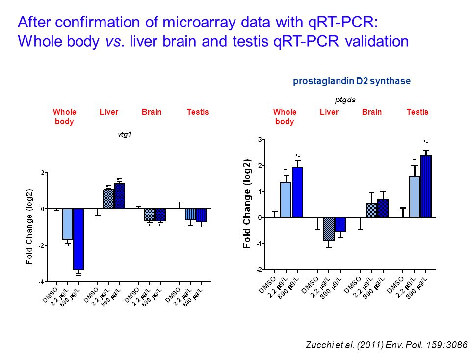 After confirmation of microarray data with qRT-PCR: