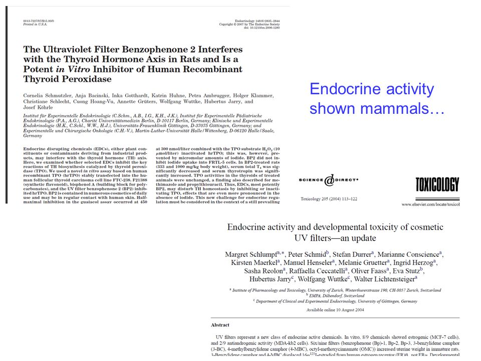 Endocrine activity shown mammals…