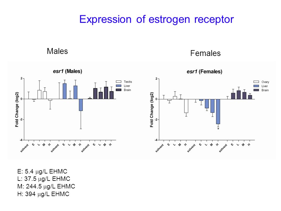 Expression of estrogen receptor