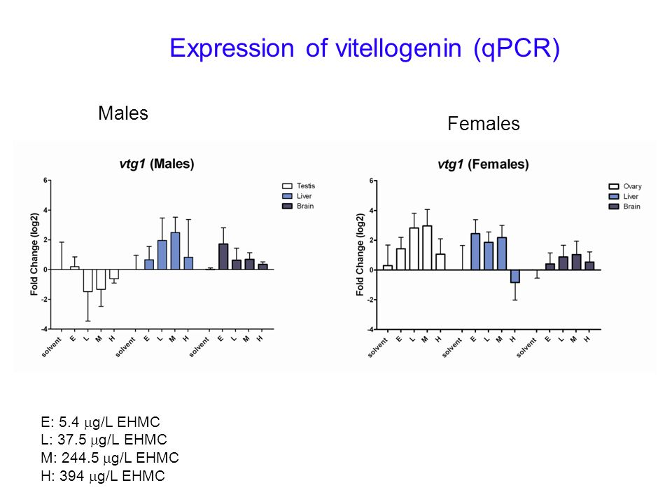Expression of vitellogenin (qPCR)