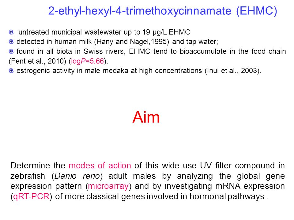 Aim 2-ethyl-hexyl-4-trimethoxycinnamate (EHMC)