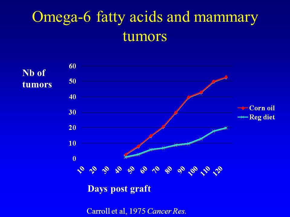 Omega-6 fatty acids and mammary tumors