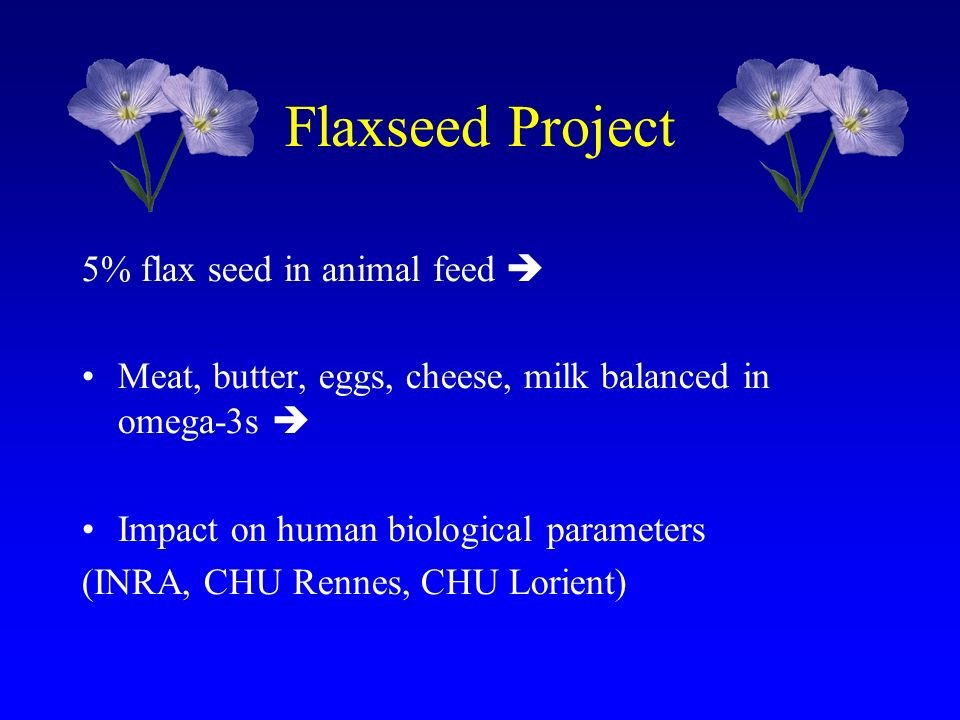 Flaxseed Project 5% flax seed in animal feed 