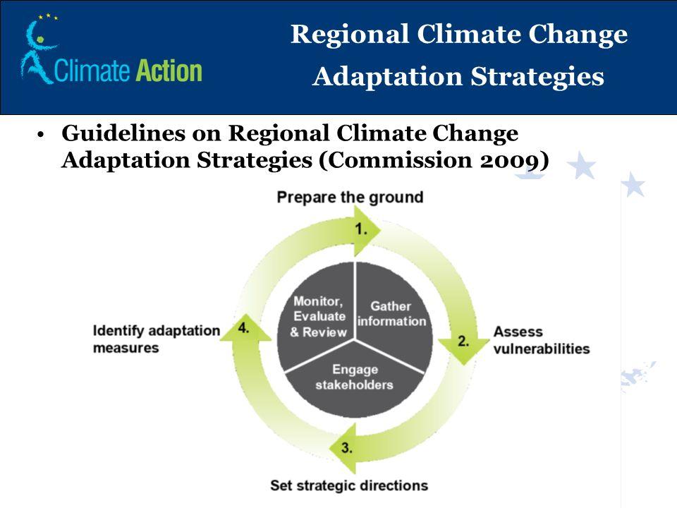 Regional Climate Change Adaptation Strategies