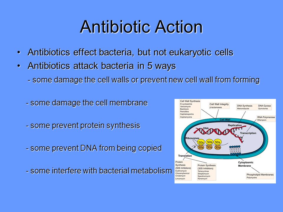 An analysis of the effects of antibiotic resistance in bacteria