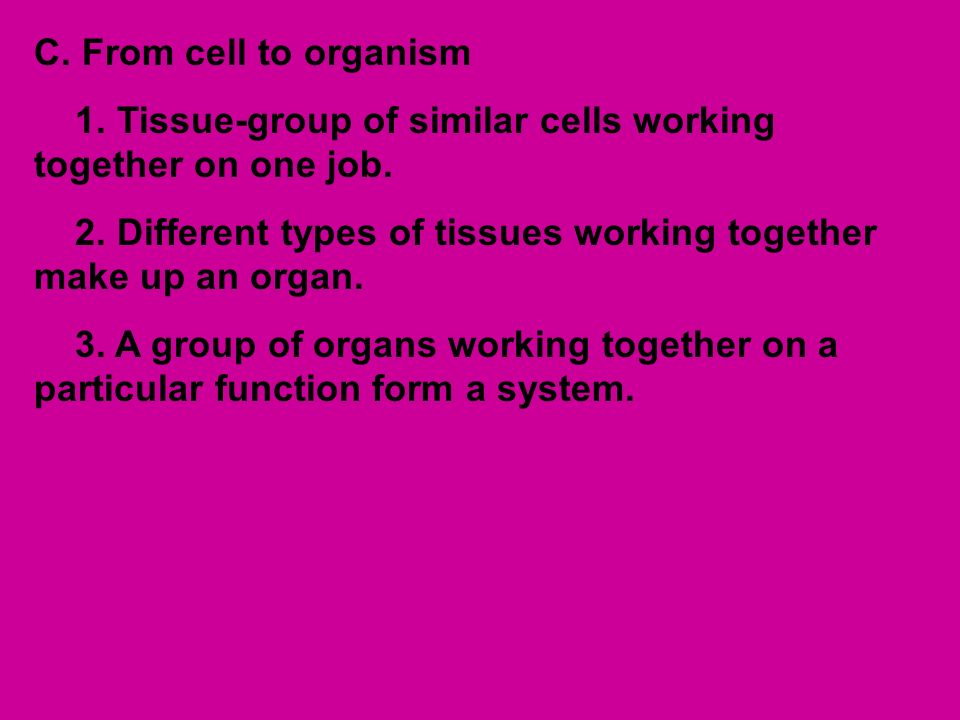 Cell Structure A. Common cell structures-outer covering called ...