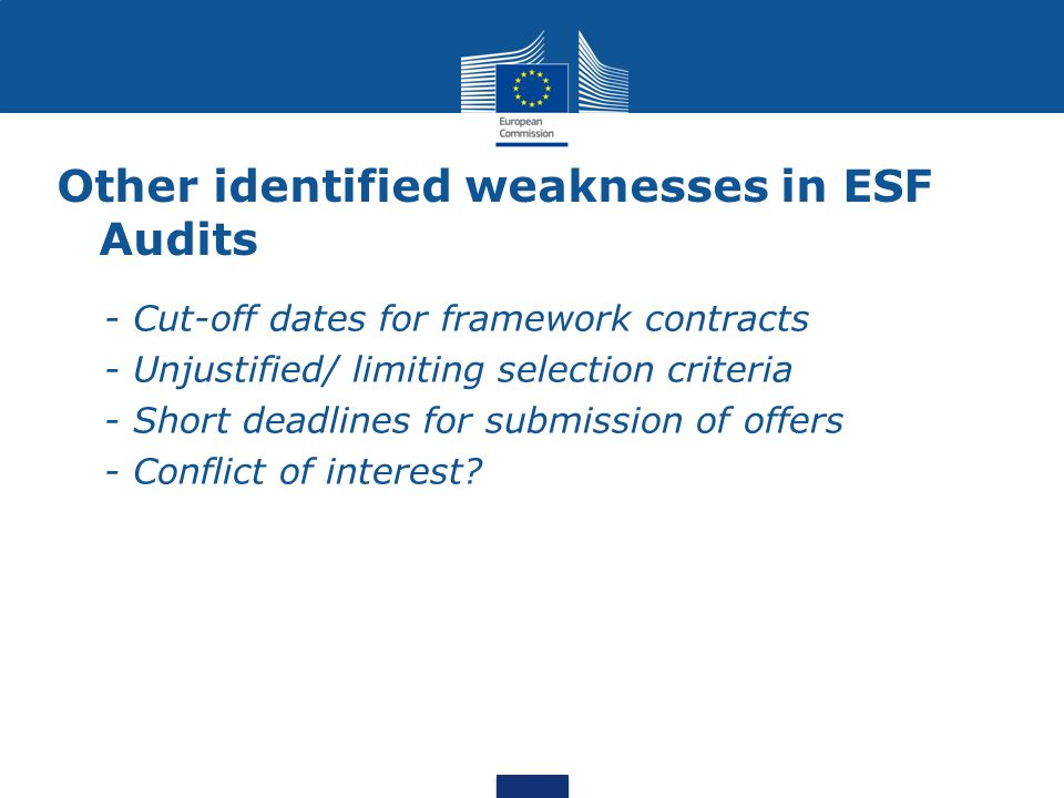 Other identified weaknesses in ESF Audits