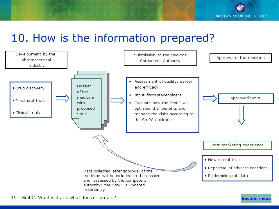 How is the information prepared