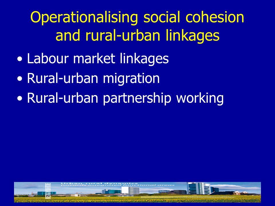 Operationalising social cohesion and rural-urban linkages