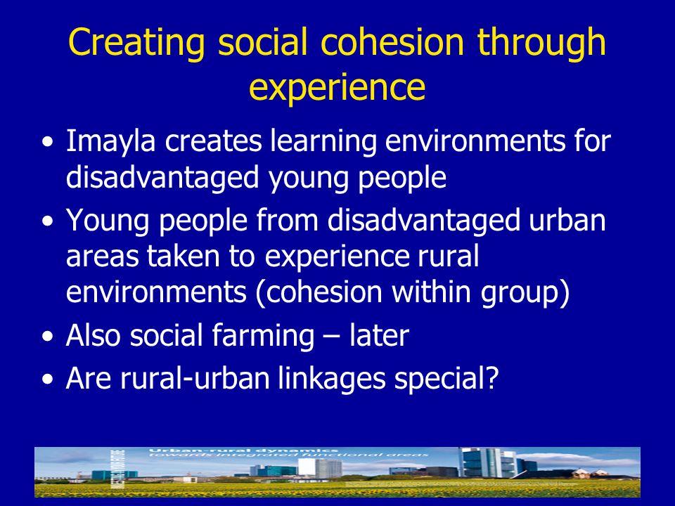 Creating social cohesion through experience