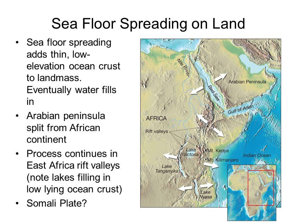 Sea Floor Elevation Data : Ch plate tectonics ppt video online download