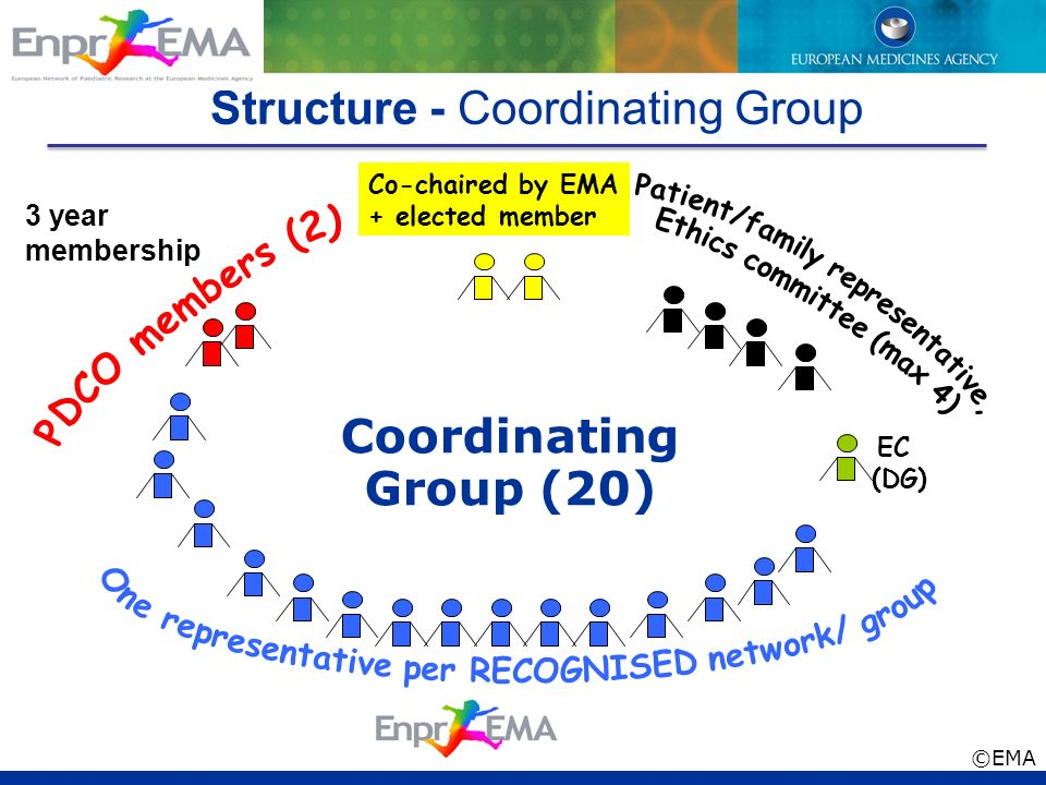 Structure - Coordinating Group