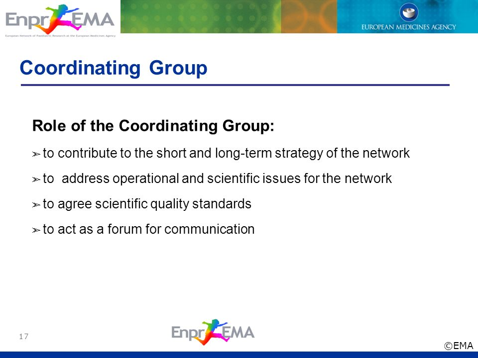 Coordinating Group Role of the Coordinating Group: