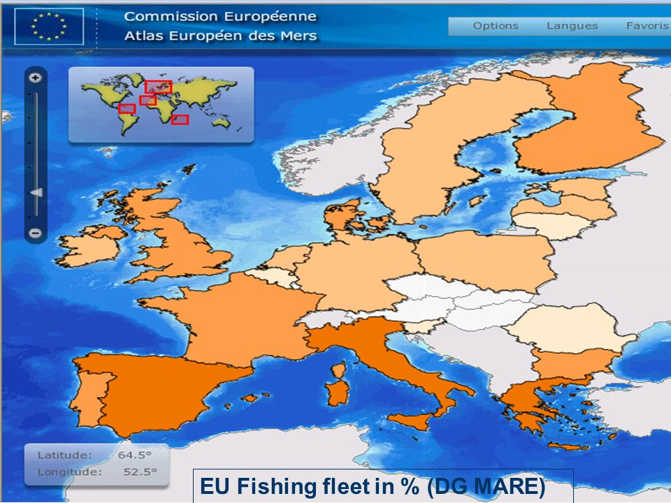 EU Fishing fleet in % (DG MARE)