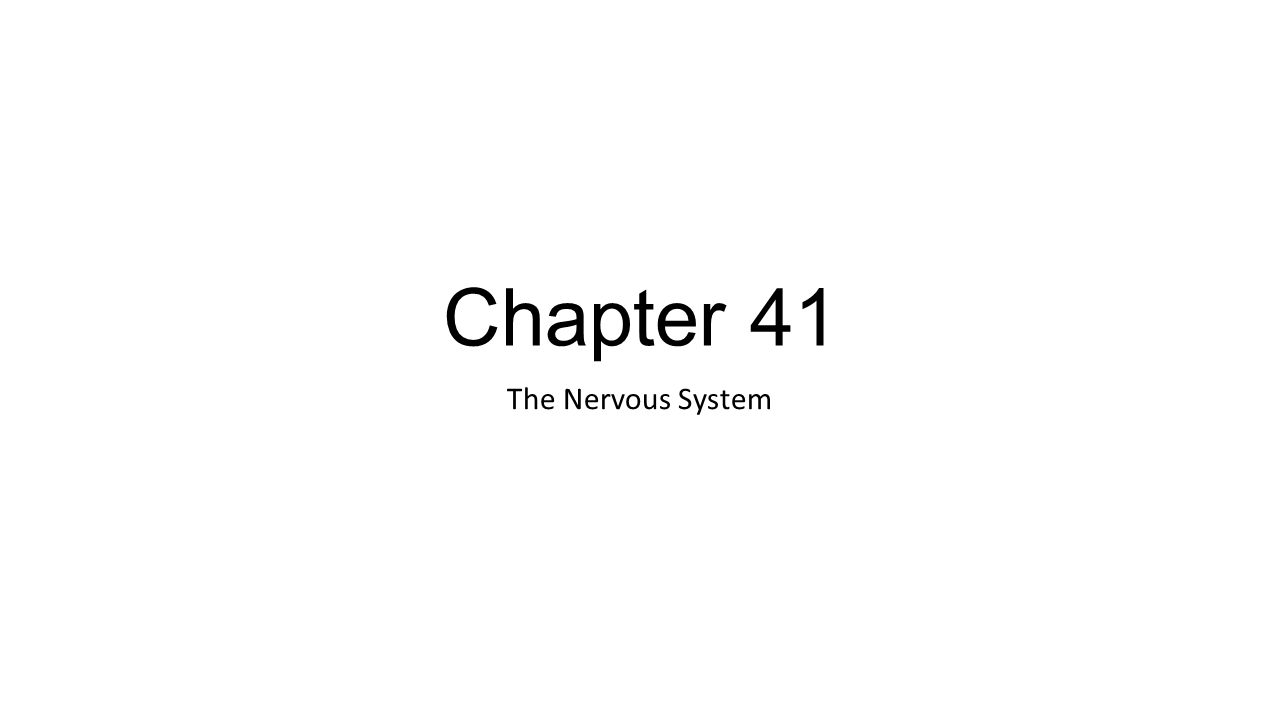 Chapter 41 The Nervous System