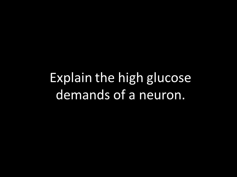 Explain the high glucose demands of a neuron.