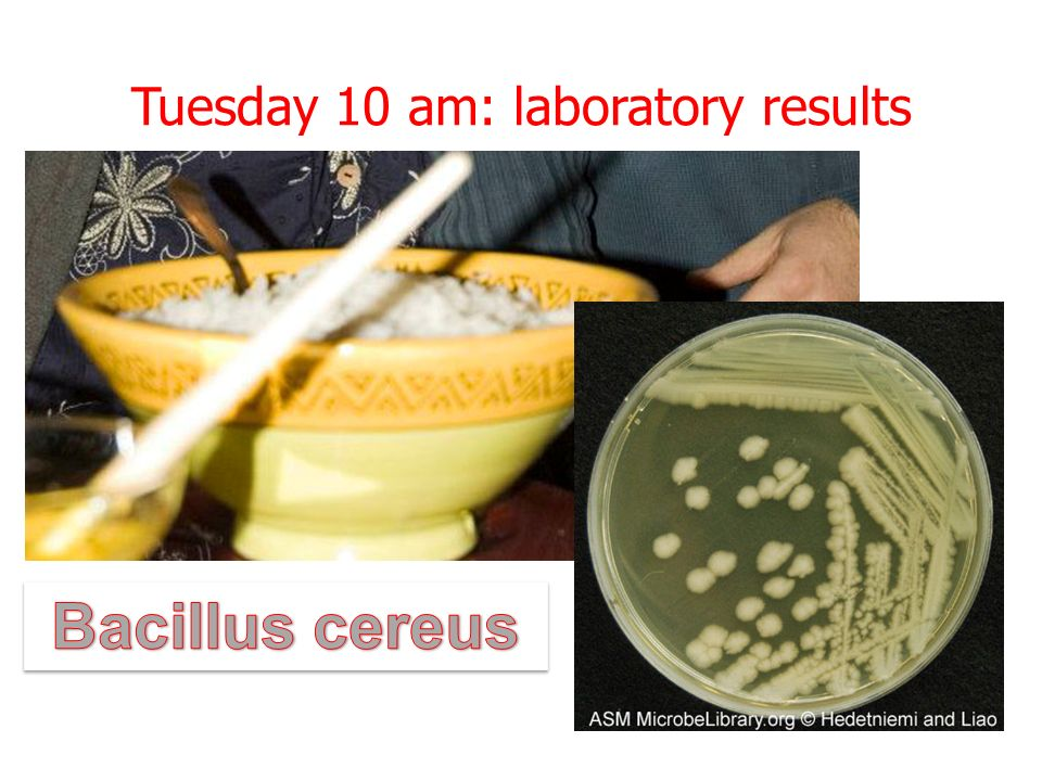 Tuesday 10 am: laboratory results