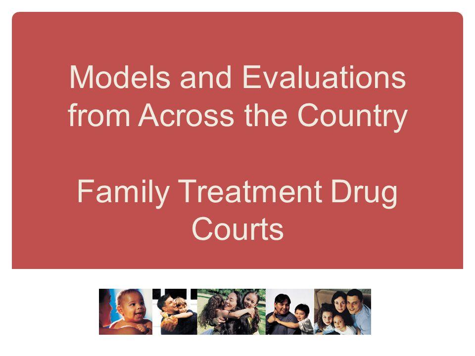 drug rehabilitation models