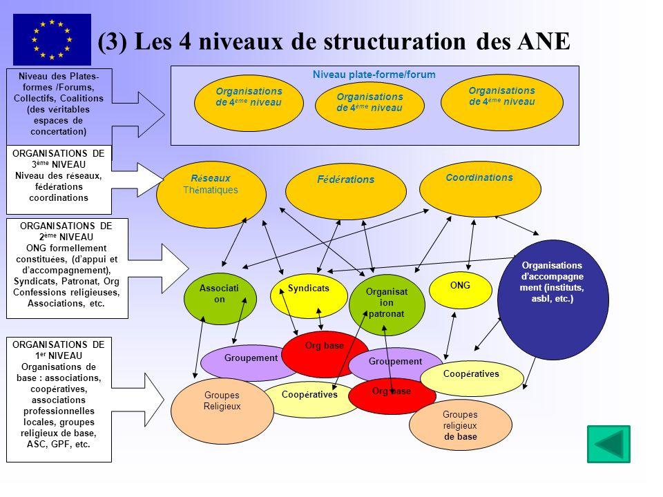 (3) Les 4 niveaux de structuration des ANE