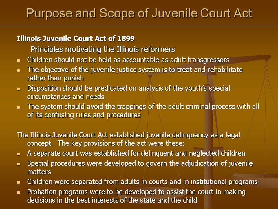 an analysis of the juvenile justice system a separate court system for children Read this essay on pros and cons of the juvenile justice system to children, and no juvenile court in 1899 the first separate juvenile court system.