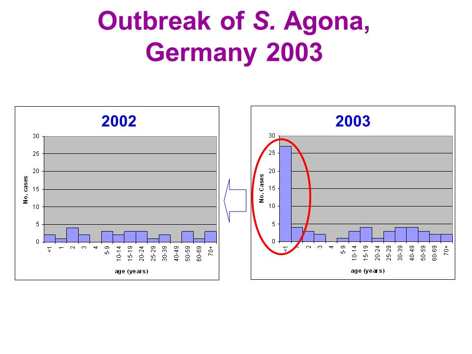 Outbreak of S. Agona, Germany 2003