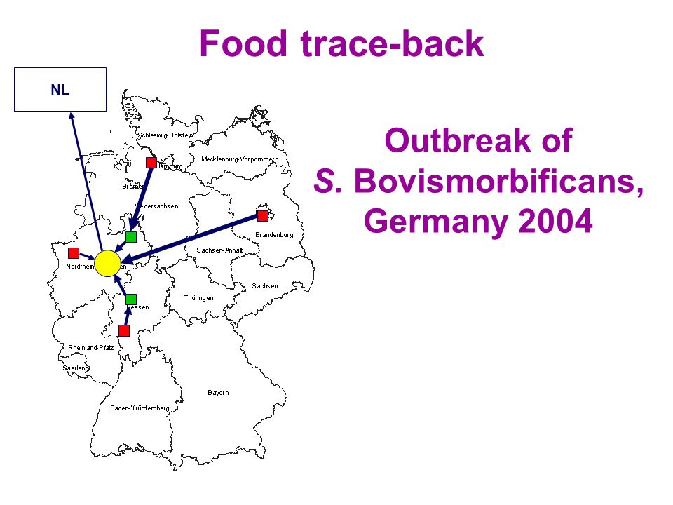 Outbreak of S. Bovismorbificans, Germany 2004