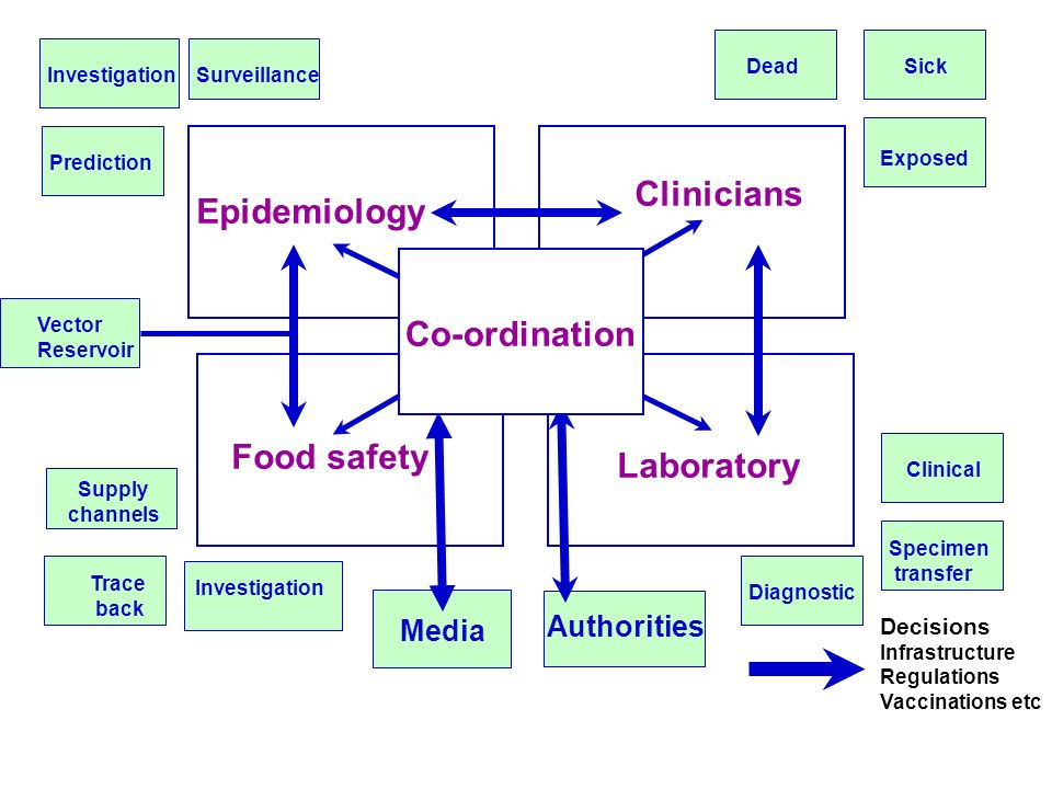 Clinicians Epidemiology Co-ordination Food safety Laboratory