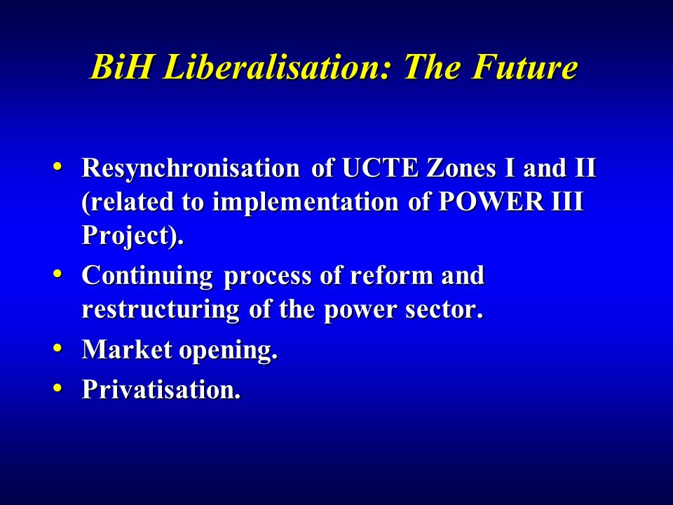 BiH Liberalisation: The Future