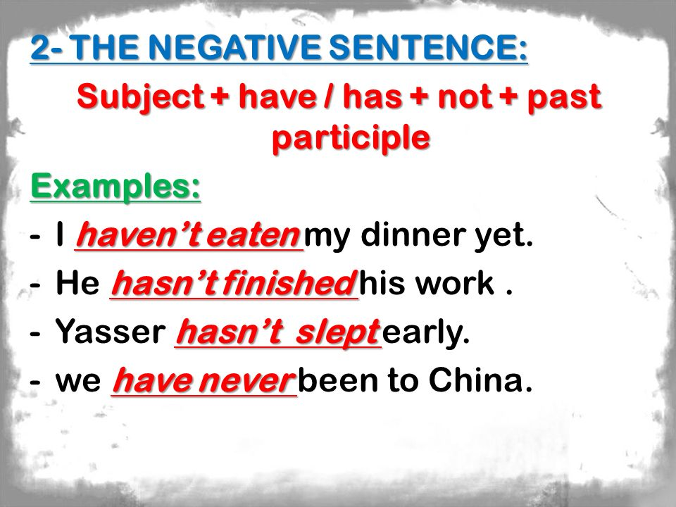Subject + have / has + not + past participle