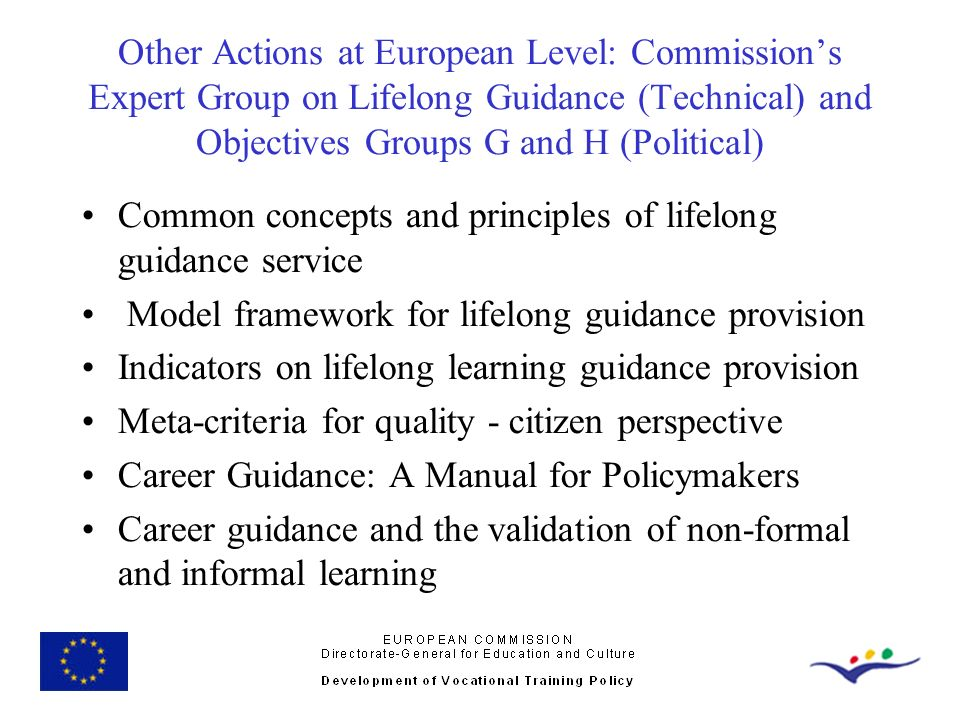 Other Actions at European Level: Commission's Expert Group on Lifelong Guidance (Technical) and Objectives Groups G and H (Political)