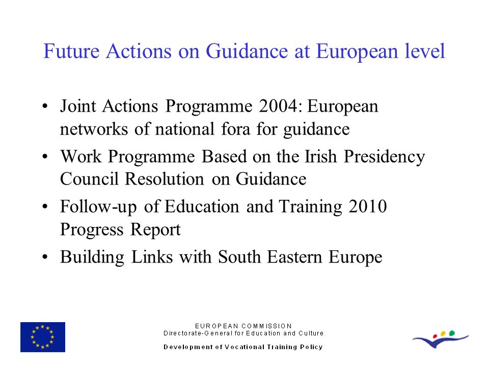 Future Actions on Guidance at European level