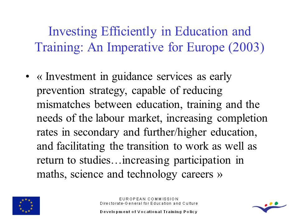 Investing Efficiently in Education and Training: An Imperative for Europe (2003)