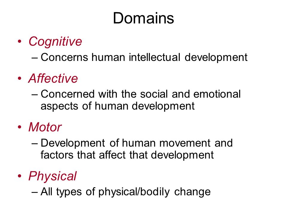 Factors Affecting Intellectual Development in Children