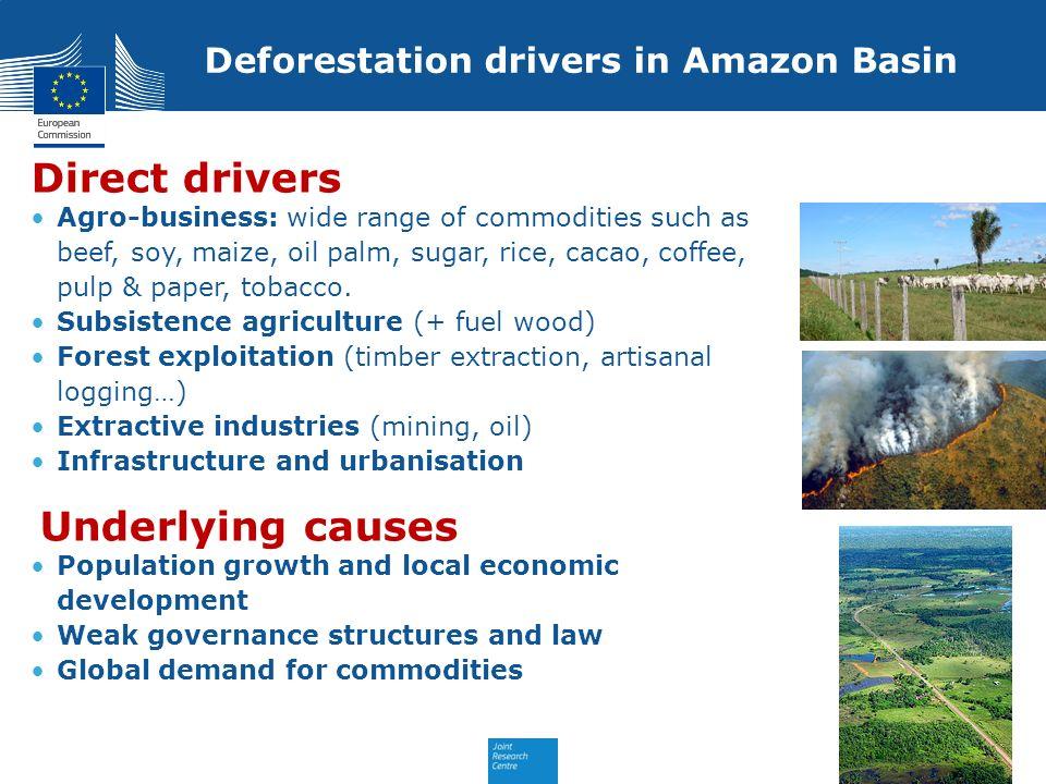 Deforestation drivers in Amazon Basin