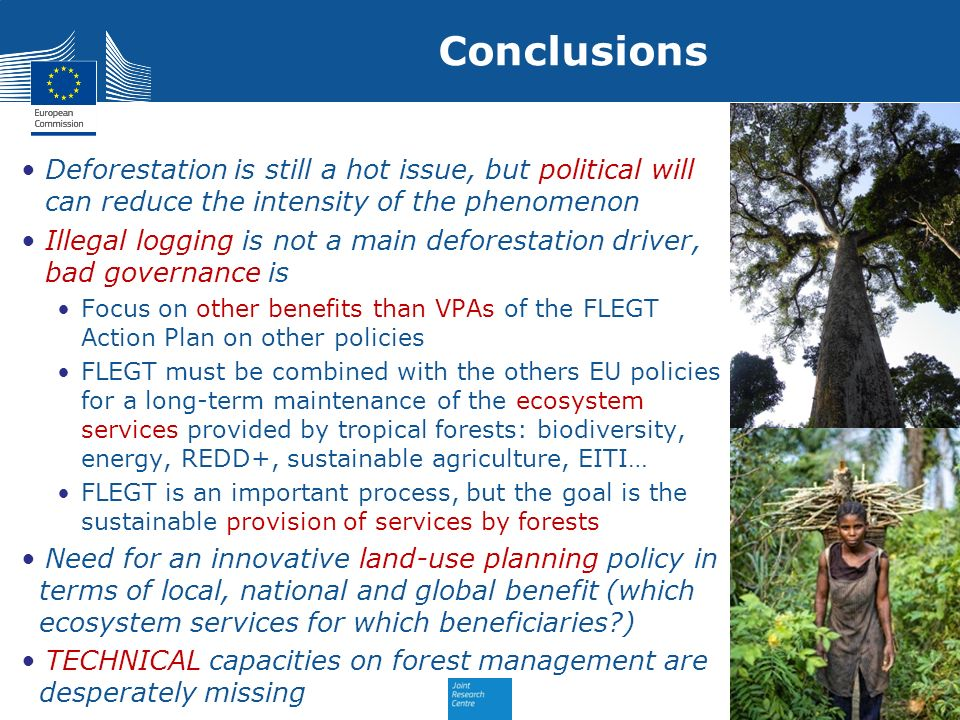 Conclusions Deforestation is still a hot issue, but political will can reduce the intensity of the phenomenon.