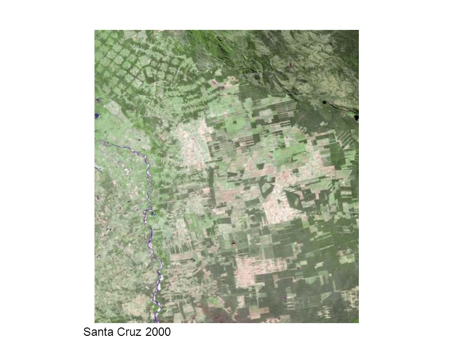 Santa Cruz 2000