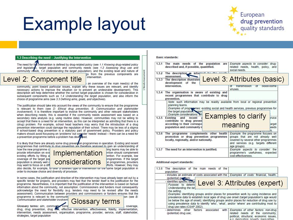 Example layout Level 2: Component title Level 3: Attributes (basic)