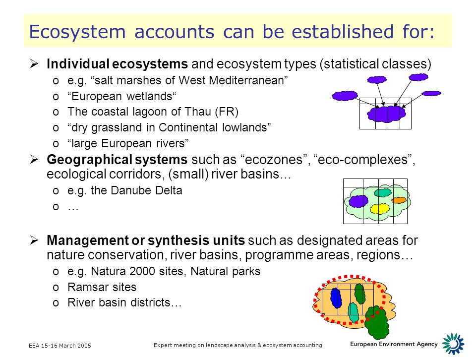Ecosystem accounts can be established for: