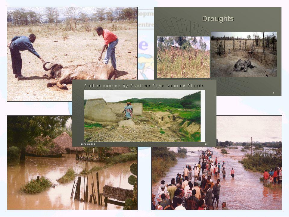 IMPACTS Lusaka, Zambia 1-5 September 2003
