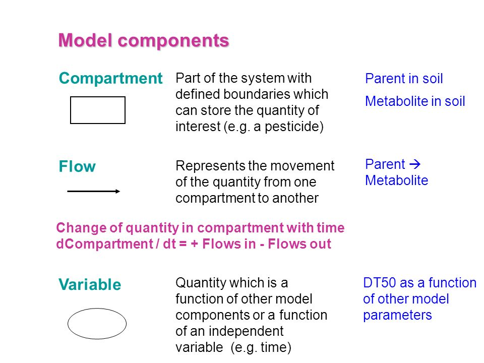 Model components Compartment Flow Variable