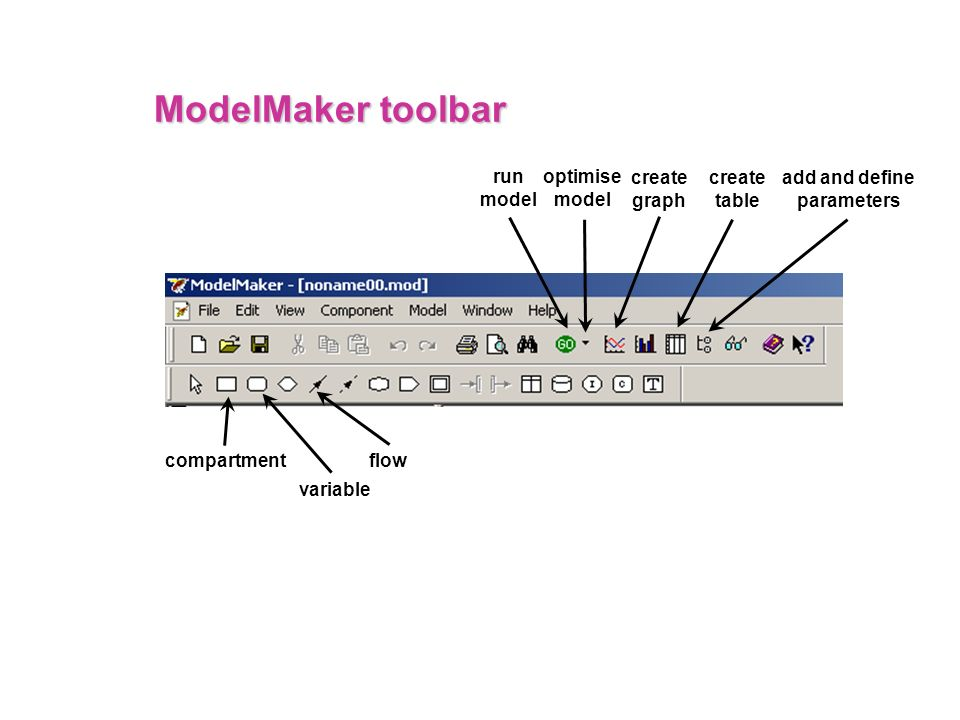ModelMaker toolbar run model optimise model create graph create table