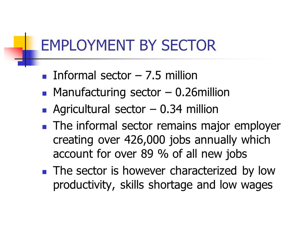 EMPLOYMENT BY SECTOR Informal sector – 7.5 million