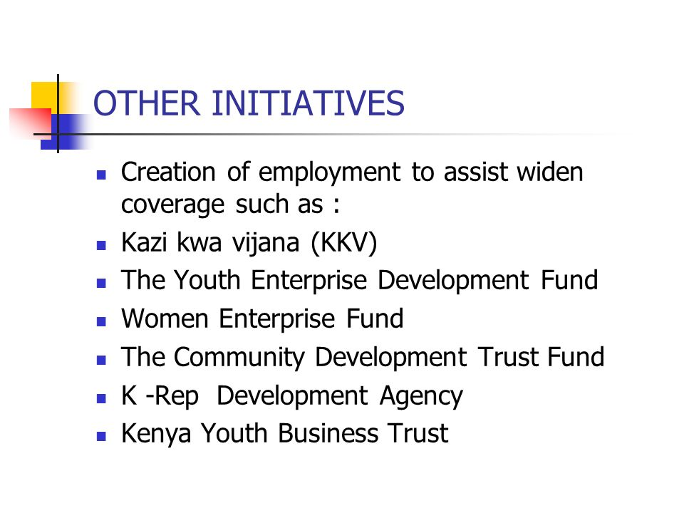 OTHER INITIATIVES Creation of employment to assist widen coverage such as : Kazi kwa vijana (KKV) The Youth Enterprise Development Fund.