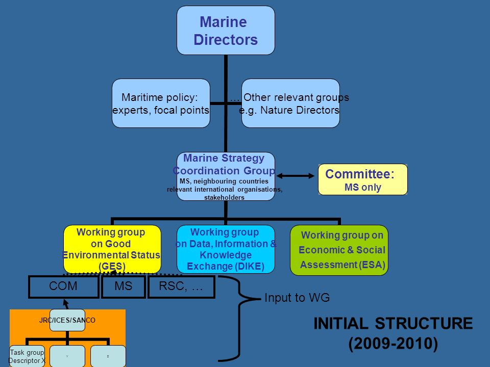 INITIAL STRUCTURE (2009-2010) COM MS RSC, … Input to WG