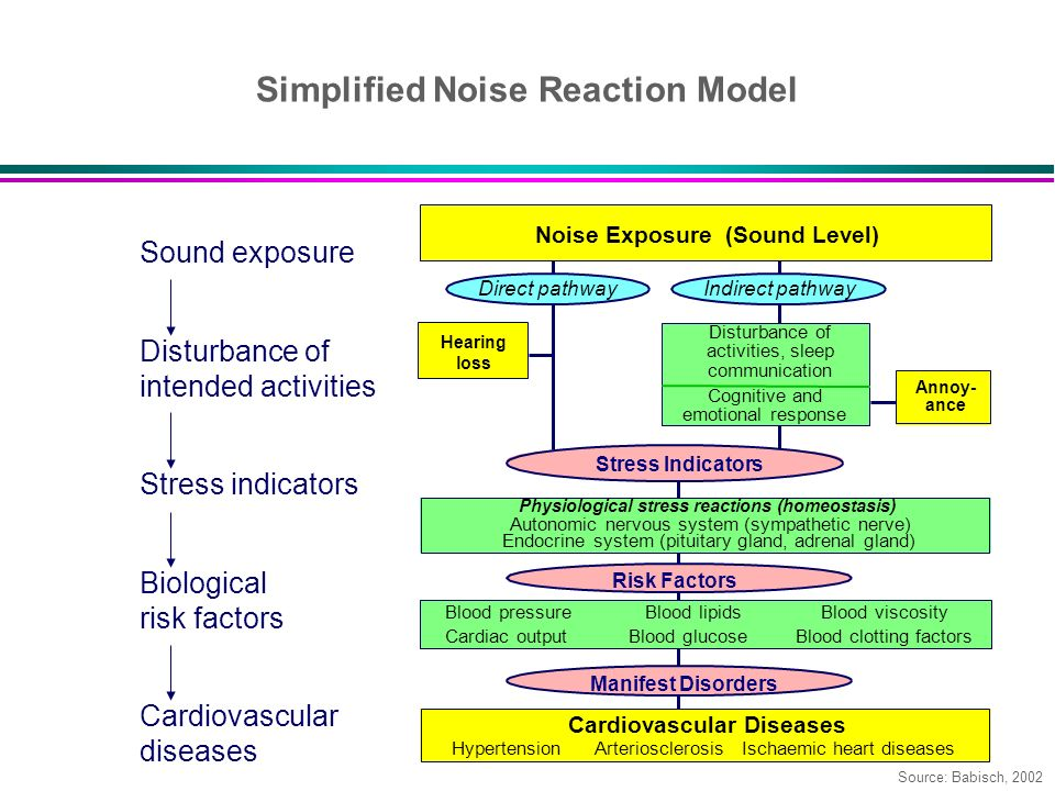 Simplified Noise Reaction Model