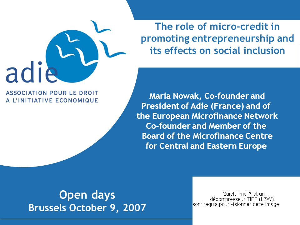 The role of micro-credit in promoting entrepreneurship and its effects on social inclusion