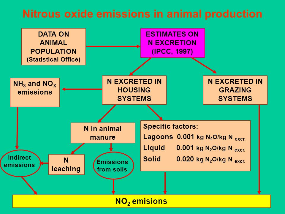 Nitrous oxide emissions in animal production