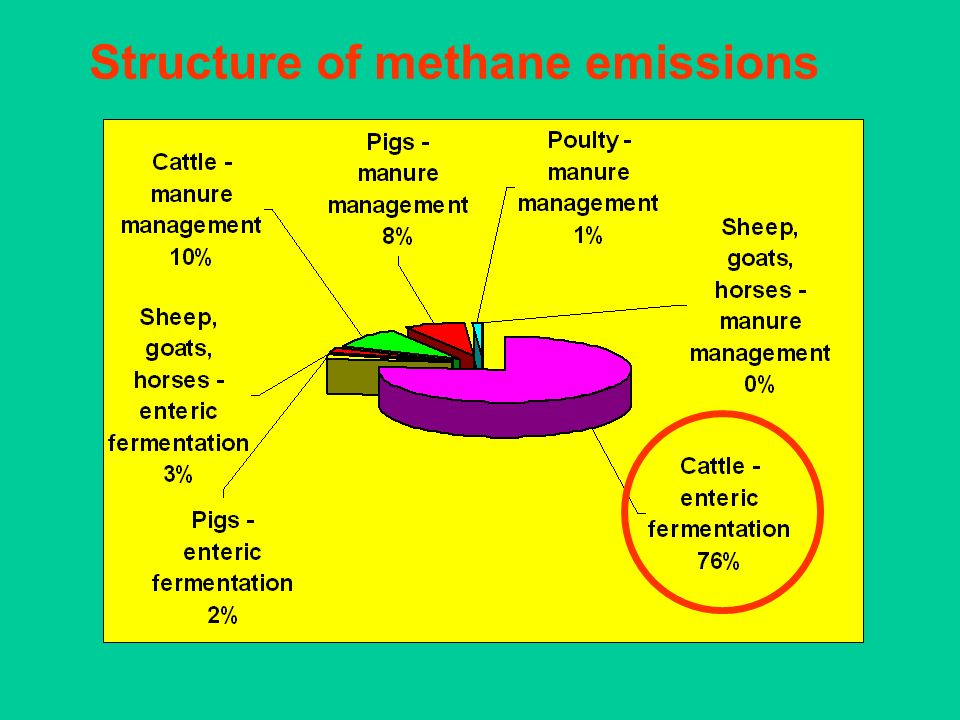 Structure of methane emissions